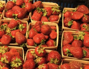 Fresh strawberries from One Straw Farm, a CSA-participating Farm in White Hall, MD