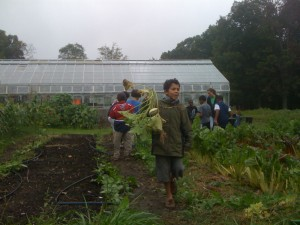 Baltimore City Public Schools' Great Kids Farm