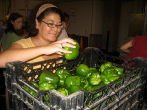 greenpeppers20092