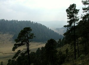Sierra Madre mountains, 2005.